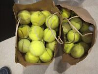 Tennis Balls - 2 bags collected