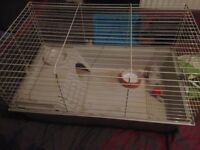 Indoor guniea pig/rabbit cage