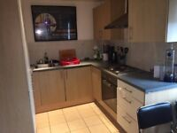 spacious, furnished Doubleroom in a 2 bed room flat with big living room and kitchen to rent