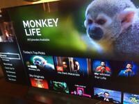 """LG 55"""" Oled 3D tv ( Sold )"""