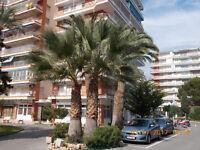Playa & golf apartment Alicante, Spain