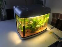30 litre fish tank pending pick up