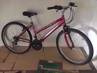 Ladies Bike needs TLC