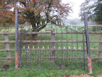 Decorative iron gates with gateposts
