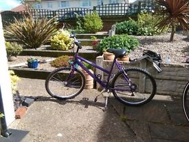 Raleigh vixen ladies mountain bike. Well looked after and in excellent condition.