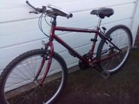 Raleigh bike as new