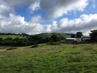Wales smallholding/equestrian property. Farmhouse & 20 acres