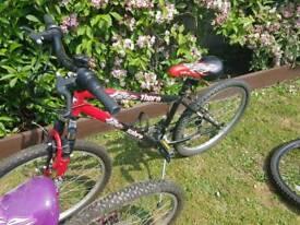 1 girls bike and 1 girls bike