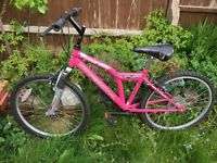 "girls pink 24"" bike"