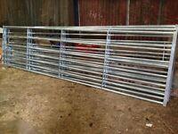 **Brand New** Galvanised Farm / Field Galvanised Gates by Bateman (Century Gates) 15ft wide