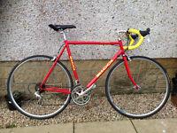 Ricci Audax bike.