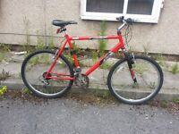 Raleigh Bike with 26 inch wheel