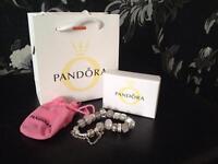 Pandora bracelet/Louis Vuitton /Michael kors