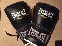 Everlast Powerlock 14oz Boxing Gloves