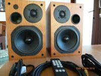 AVI ADM9.1T Active Speakers