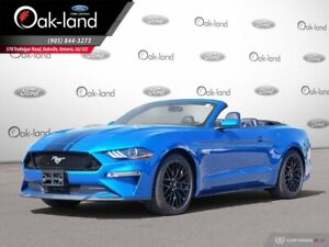 2019 Ford Mustang GT haut niveau