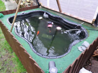 2 FISH PONDs + UV FILTER PUMP (open to offers)