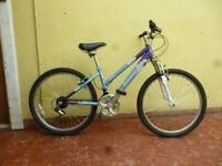 Raleigh Extreme Youth Mountain Bike ( frame size 14 inch)