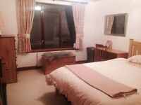 Various accommodation to rent