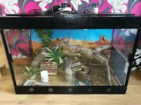 3ft Reptile Vivarium / Reptile Home/House - plus all the kit needed (excellent condition)