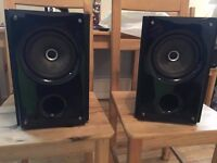 Insignia Model No. NS-B2111 Bookshelf Speaker Set 120 WATT POWERFUL and CHEAP
