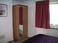 Spacious Double Room for a Professional - Available Now!