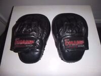 PRO CHAMP CURVED BOXING FOCUS PADS