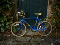 Boy's Racing Bike