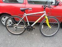 OSCAR men Bike with 26 inch wheel