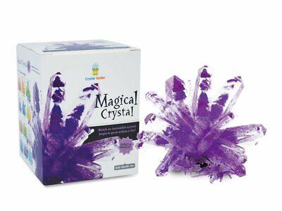 AMETHYST PURPLE Magic Crystal Growing Kit Mystic Rock Garden Science Experiment - Magic Science Kit