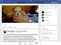 One dog puppy left due to go I week May