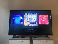HD TV - 44 inch ( 1 year old - original condition )