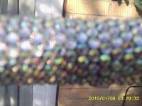 diamante crusted walking sticks