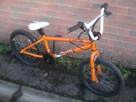 X Rated Dekka BMX Bike