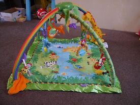Fisher-Price Rainforest Gym/Play Mat