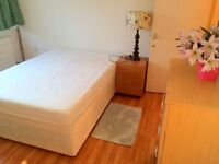 Lovely and bright double bedroom in a very friendly flatshare