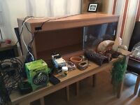 4ft Vivarium with Complete Set Up and Extras