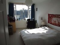 Short term rental for double room in lovely sunny top-floor flat