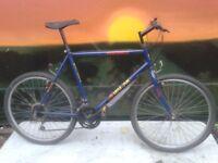 Malboro SPARTAN Large Mountain Bike VGC