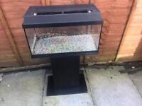 "2ft x 12"" x 12"" fish tank with stand"