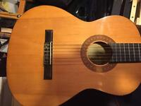 Acoustic 6 string guitar