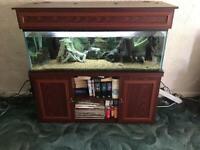 Aquarium and stand plus accessories