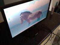 Acer 21.5 computer screen