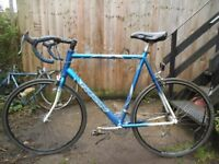 Saracen Tour 14speed Fast Road Bike XXL65cm Liteweight 7005 Aluminium Frame Miche Wheels Index Gears