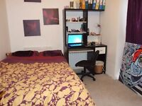 Spacious Six bedroom Student house located on The Avenue: **Eligible for our Tenant Reward Scheme**