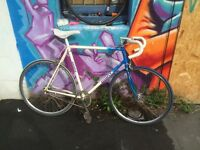 Vintage Giant 60cm Road Bicycle - Single Speed / Fixed Gear - Converted + Extra's!