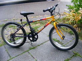 "BOYS 20"" WHEEL TREK BIKE IN GREAT WORKING ORDER AGE 7-11"