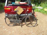 vintage ladies sit up and beg bike