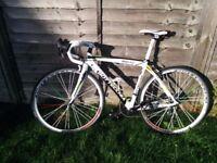 Bottecchia Duello Reparto Corse Road Bike, Campagnolo Set, Carbon Forks