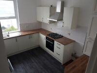 Spacious 1 Bedroom Flat close to Mutley Plain